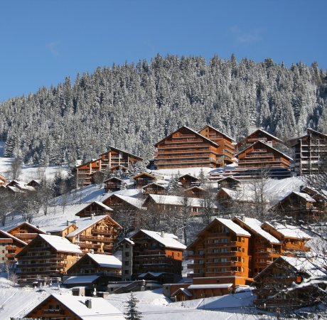 Chalets in Meribel
