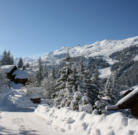 Snowy trees and chalets in france